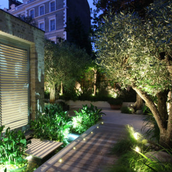 contemporary garden with shutters, water rill and olive trees