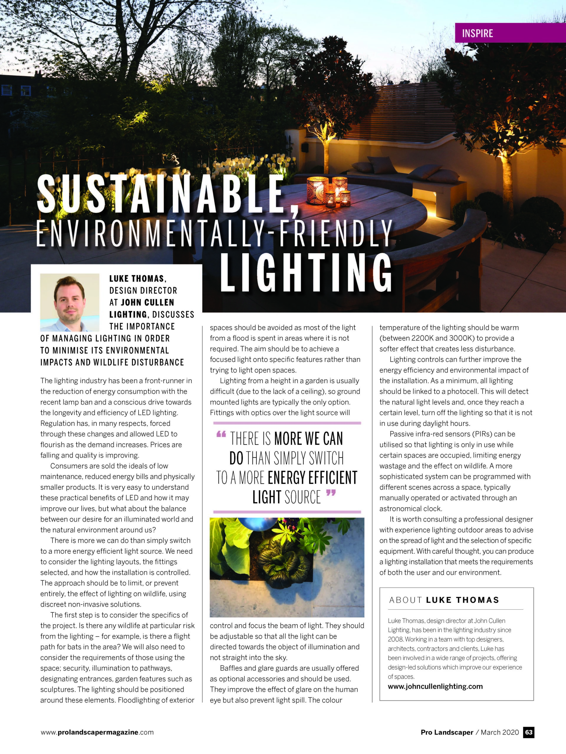 Sustainable Lighting Tips with Pro Landscaper