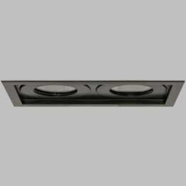 Double Square Downlight