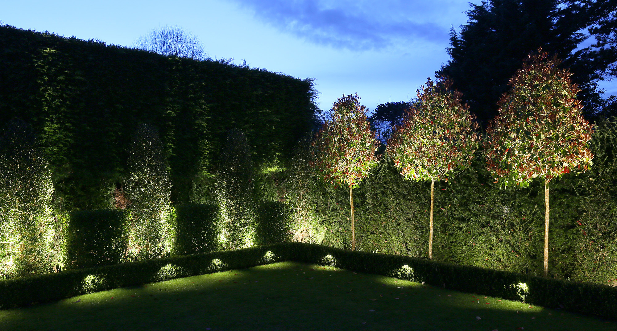lighting to lawn with uplit trees