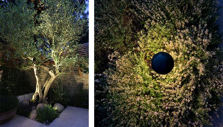 Spike light fittings in a flowerbed provide interest on terraces