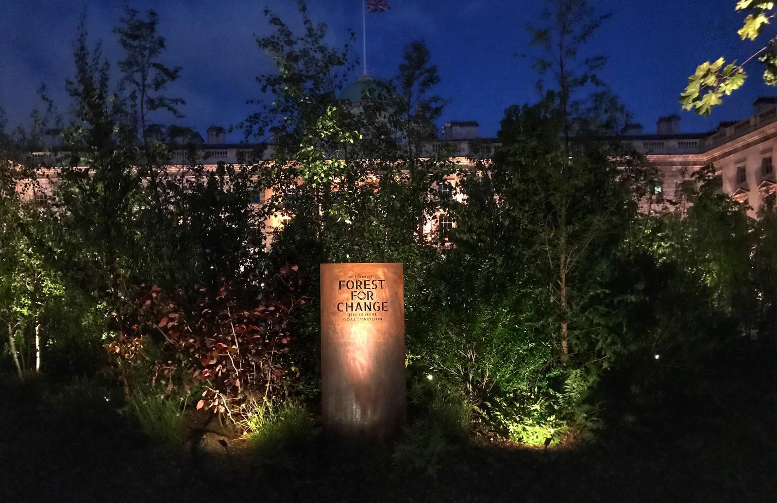 lighting up forest for change sign