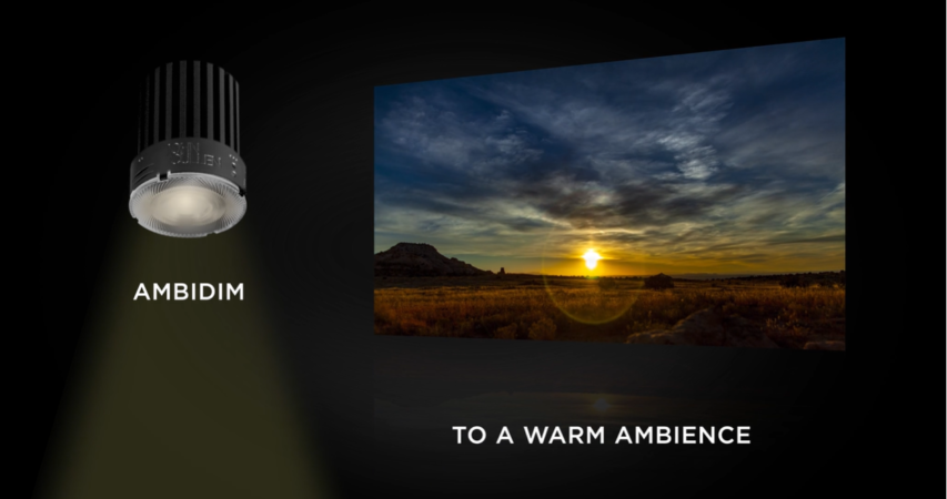 Ambidim engine goes from cool to warm
